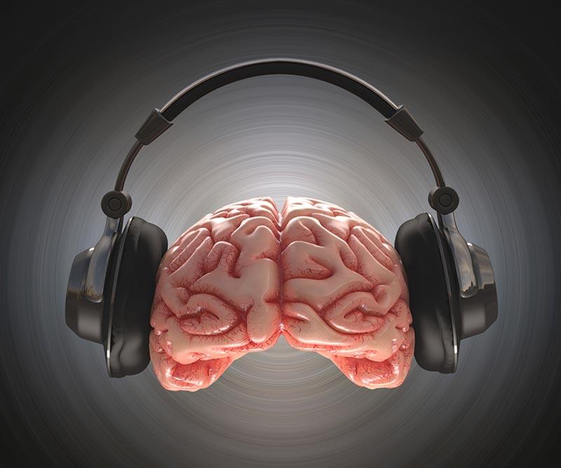 مغز و هدفون