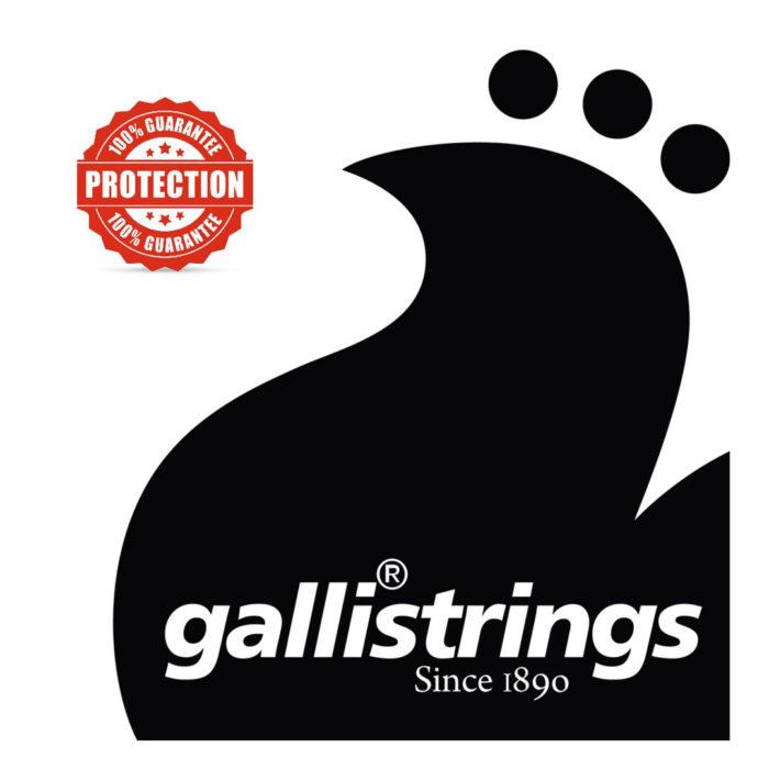 سیم چنگ Gallistrings مدل Harp Celtique F31