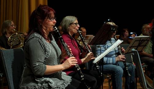 بعضی از بزرگسالان با هدف اجرا در کنسرتها یادگیری موسیقی را شروع میکنند.